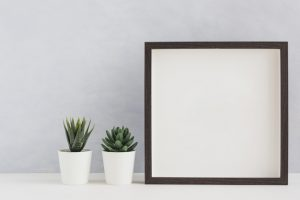 two-white-potted-cactus-plant-with-blank-white-photo-frame-desk-against-wall_23-2147920685