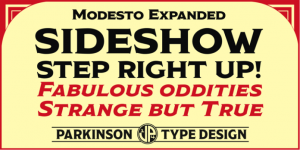 Modesto Fonts free download from GoDesign.pk