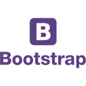 Bootstrap Services in Pakistan